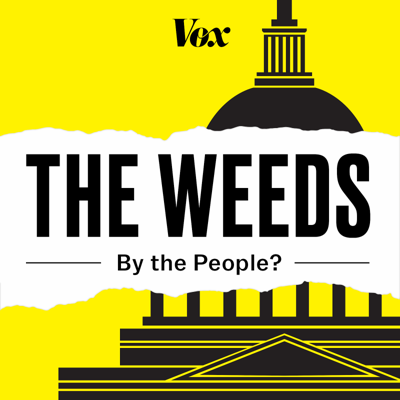 Cover art for By the People: How to make sure your vote is counted