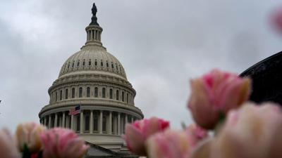 Cover art for Details Emerge On Senate's $2 Trillion Rescue Package